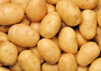 البقوليات البطاطس